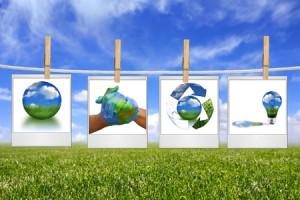 Sector hernieuwbare energie